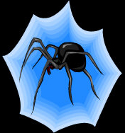 Spider - all in black with red eyes and a blue to white web.