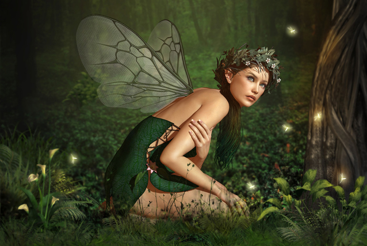 Fairyland - with a Fairy Queen kneeling within the Woods - with Buttercup Fairies flying around her.